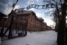 The Holocaust / The term 'Holocaust' refers to the systematic murder of six millon Jews by the Nazis and their collaborators between 1933-1945.  Between 1933 – 1939, Jews were excluded from all walks of German life and between 1939 – 1945, Jews were murdered by mass shootings, gassings and imprisonment in concentration camps.