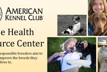 Groups We Support! / The NCA Supports many charities that help dogs, rescue dogs in need,  and promote canine health and research.
