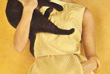 Meow / by Wren