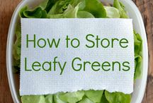 Green Ideas for Spring / Find better ways to maintain your greens, whether in your body or in your fridge. / by Model My Diet