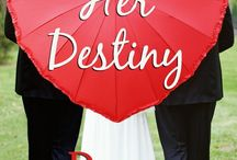 Double Her Destiny / Book 4 of the Double Seduction Series / by Randi Alexander