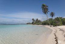 A voir - A faire en Guadeloupe depuis le Gîte Cannelle