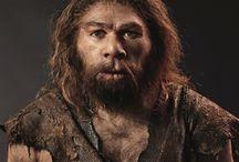 History: Human Evolution