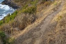 Trail shots of the Heysen Trail