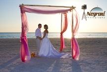Un brin de paille sur l'océan... / Thème du mariage de mes rêves !