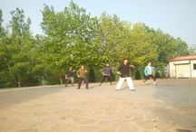 chinese Handan kungfu School / learn kungfu in chinese Handan Tradition martial arts School.