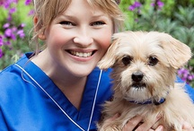 PDSA Celebrity Supporters / Lots of celebrities support PDSA because they understand just how important pets are to millions of us. There are some of the famous names who have kindly posed for photographs, attended events or helped PDSA in whatever way. / by PDSA