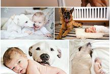foto babies and pet