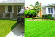 Before and After / Here are some pictures of yards before DeClark's Landscaping arrived, and after we left.