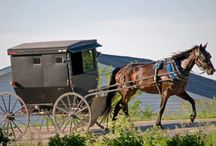The Amish Firefighter / Amish fiction storyboard
