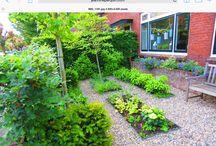 Voortuin / (Voor)tuin