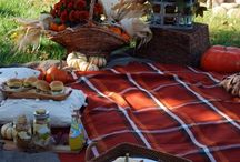 Party - Picnic