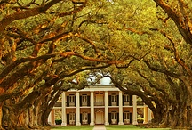 Southern Charm / Historic Plantations,and gardens.