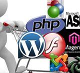 Prolixus / Prolixus It Web Development