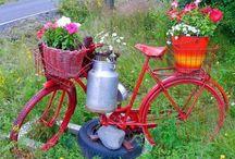 Jardines y Flores