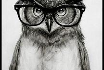 Pöllöjä ja muita hölmöjä