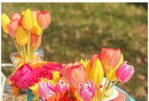 מסיבת אביב