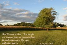 My Scriptures On Photos / Scriptures on my photos