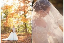 Our Blushing Brides / The amazing brides we have had the honor and pleasure of helping find their wedding gowns.