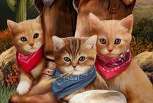 gato bonitos