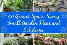 Patio Gardening / The perfect ways to maximize small spaces