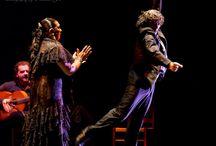 9th Annual Bay Area Flamenco Festival/Festival Flamenco Gitano 2014 / The 9th Annual Bay Area Flamenco Festival/Festival Flamenco Gitano 2014 featured dancers Carmen Ledesma and Rafael de Carmen, singers José Méndez and Mari Peña and guitarist Antonio Moya.