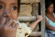 Nutrición en México