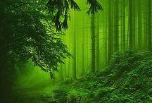 Green Greens Greenery
