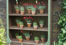Garden Theatre / Auricula Theatres and Garden Theatres - plant displays for delicate flowers.
