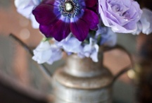 .. Botanica Events .. / We are a vintage and unique rental company specializing in Bohemian and vintage rentals in California.   / by Botanica Events