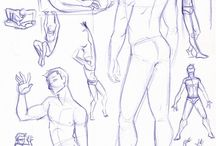 anatomía hombre