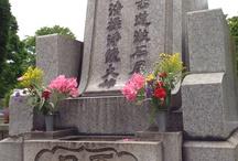 Visit Graves