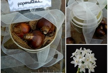 My Gifts in a Jar/Container OBSESSION / by Tawna Scalese