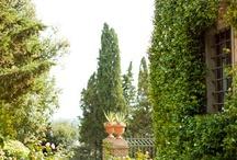 Garden / Varandas e jardins inspiradores