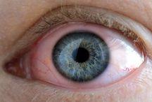 Göz Sağlığı / Göz hastalıkları teşhis ve tedavisi hakkında genel bilgiler...