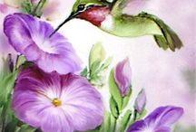 wartercolor drawings