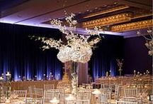 Chicago Wedding Venues / Some of our favorite wedding venues around Chicago! / by Wedding Guide Chicago