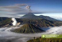 Bromo-Madakaripura-Ijen-Baluran [operator : Jong Java] / November 2 - 5, 2013 Gunung Bromo, Kawah Ijen, Taman Nasional Baluran Link : http://triptr.us/s3