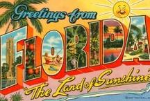 Florida History / by Jennifer Graddy