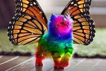 fantasy animals for Tess / fantasy