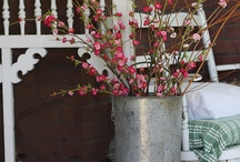Porches and Sweet Tea / by Cheryl