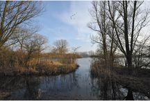 Natuur Nijmegen e.o.