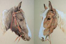 Pferdeportrait malen / zeichnen lassen