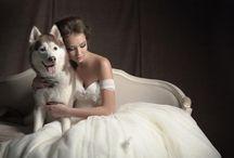 Disney/Fairy tale wedding style/迪士尼/童話/主題婚禮