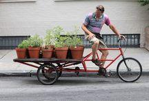 Bike's Working / by Thomas Cole