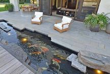 Inspiration Wasser Teich