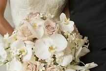 Bridal Bouquet / by Haline Powers