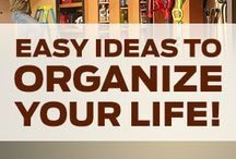 Home Organization / Help in organizing the home