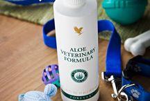 Aloe Pets / #animallovers #aloe #veterinarycare #happiness