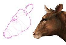 Koeien / Voor kubv